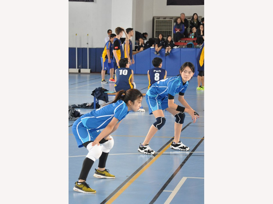 ACAMIS-Volleyball 1