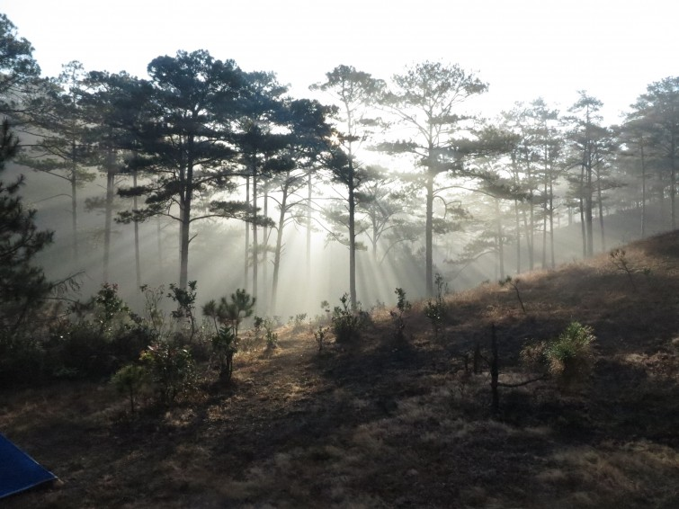Waking up in places like this, in Dalat, can not be beaten - Quoc Huy