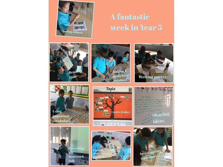 A fantastic week in Year 5