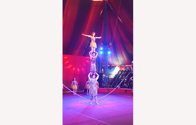 Y2 Circus 7