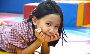 Make an enquiry BVIS