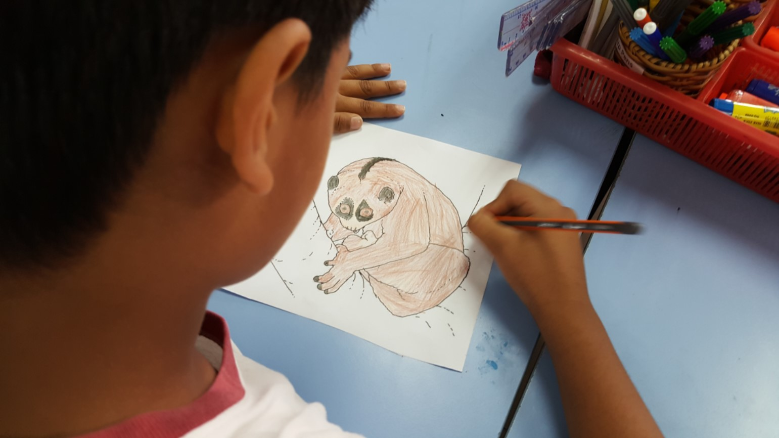 Year 4 Learn about Endangered Species in Vietnam (6)