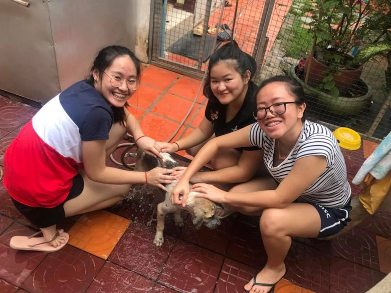 Northbridge International School Cambodia - Paws Crossed