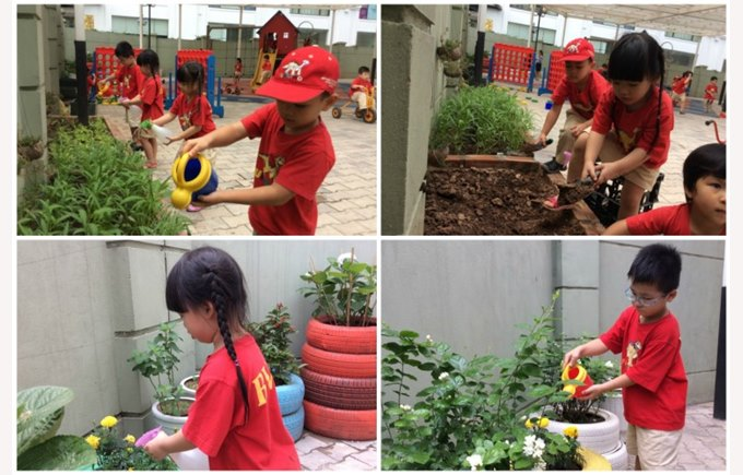 BVIS Early Years protect the environment (3)