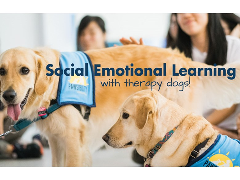 Pawsibility's Social Emotional Learning workshop