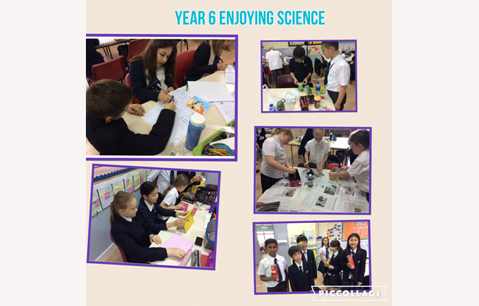 Budding scientists in Year 6