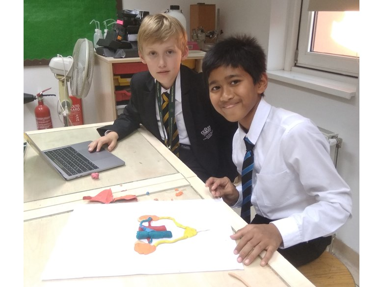 Year 7 science project