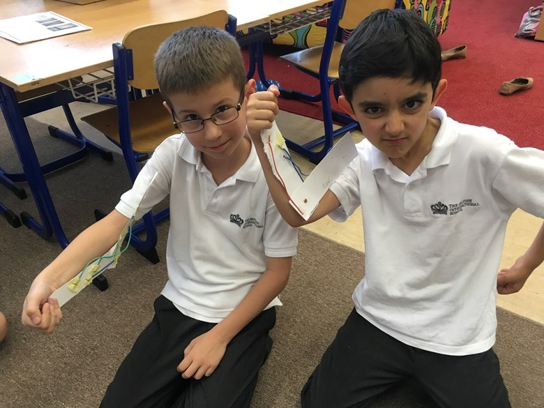 3C learning about muscles