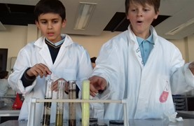 Primary Science C