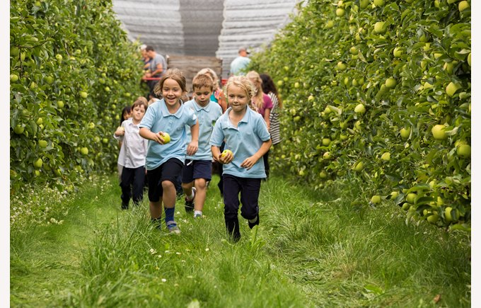 Primary studetns running through the apple orchards
