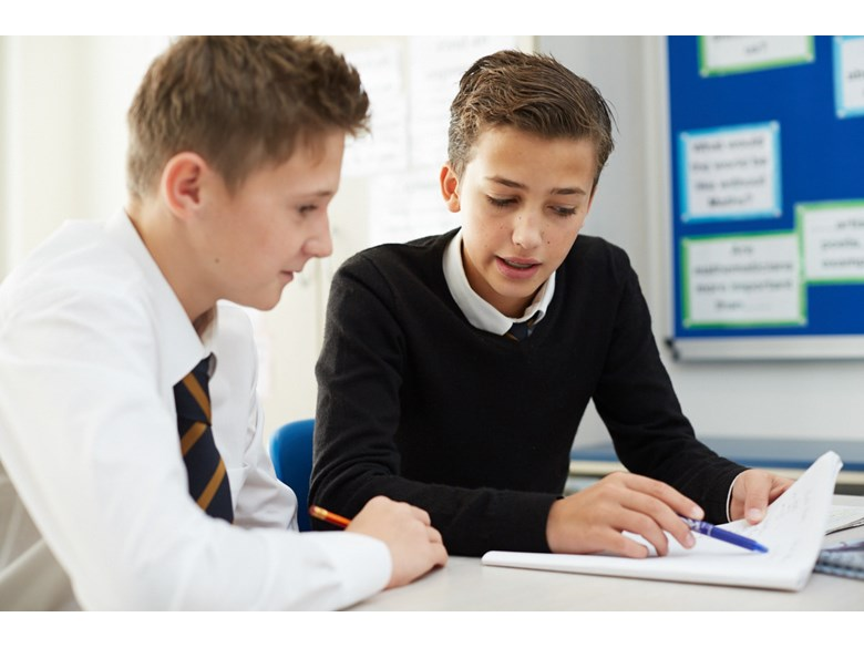This image shows two students working together