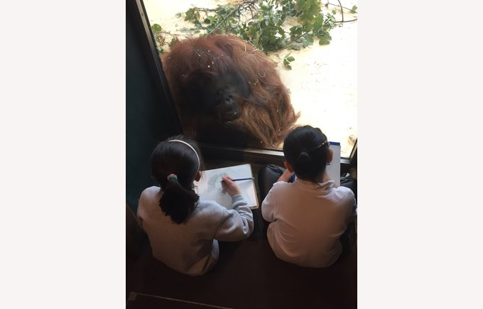 Y3 in ZOO Vienna