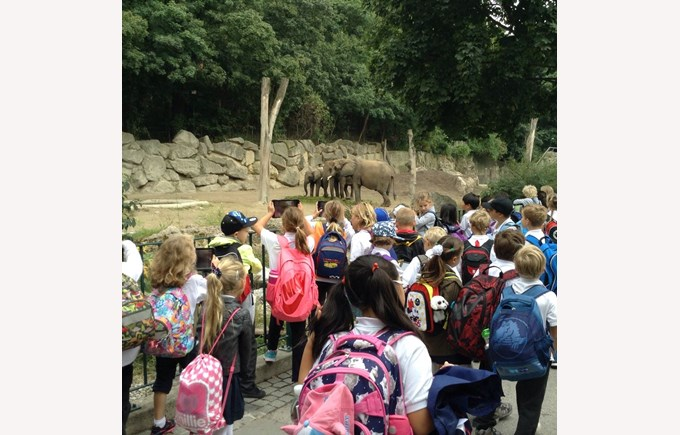 Year 3 in Vienna ZOO