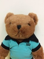 norman jupiter bear