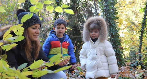 Forest school - Interview with Sabrina Bäriswyl, Head of Pre-School