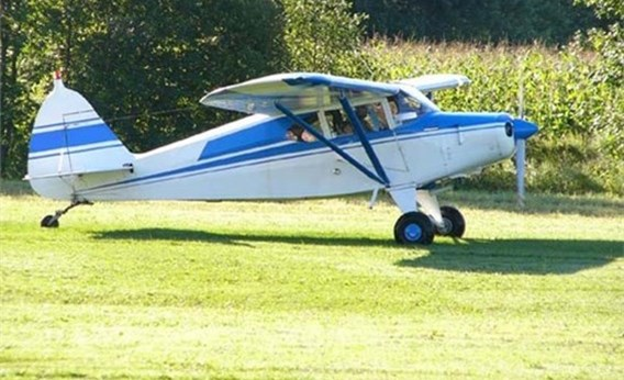 Piper Pacer 135