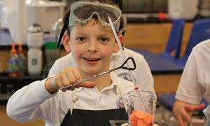 A student conducts a science experiment