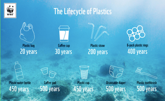 The Lifecycle of Plastics