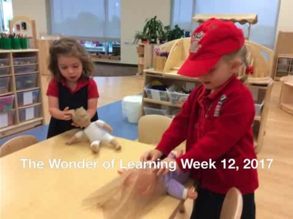 The Wonder of Learning - Week 12, 2017