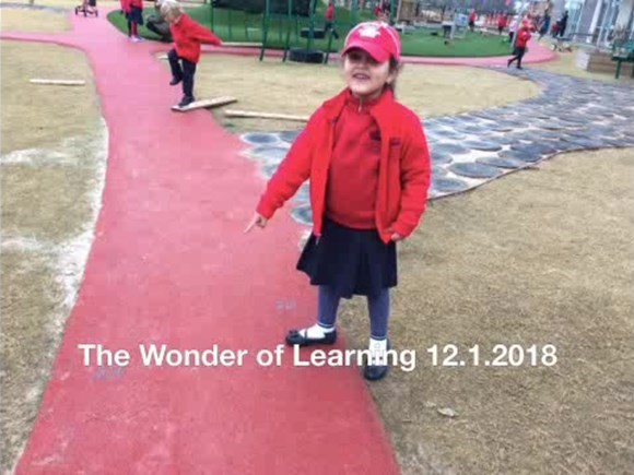 The Wonder of Learning