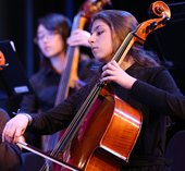 NBPS Orchestra
