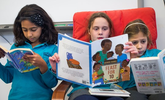 A group of students reading