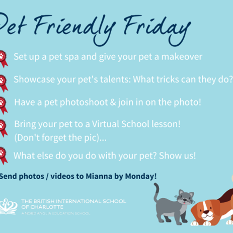 This Week: 'Pet-Friendly' Friday!