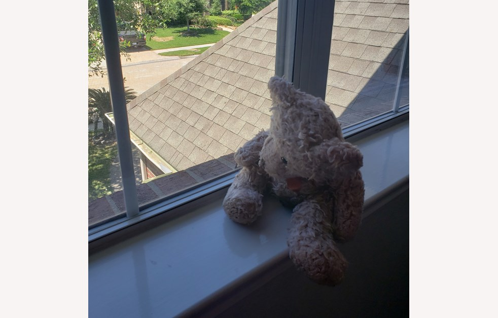 News and Events_Teddy Bear Hunt_2